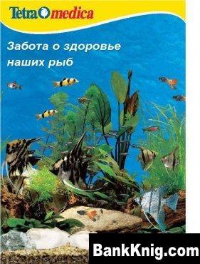 Забота об аквариуме