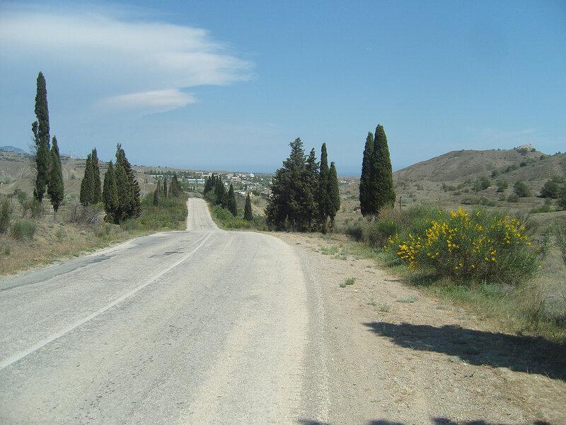 кипарисы на западном въезде в Солнечную Долину