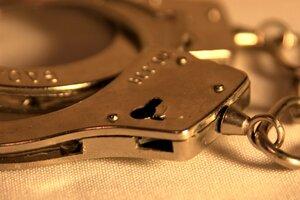 В Италии за хищение задержали 13 граждан Молдовы