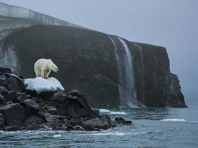 NatGeo, A Year of Photos of The Day.jpg