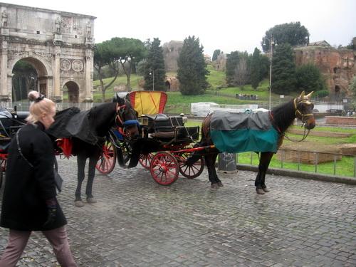 лошадки (2).jpg