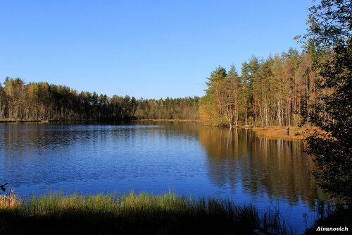 На ближнем озере моем, осенний лист лежит кругом
