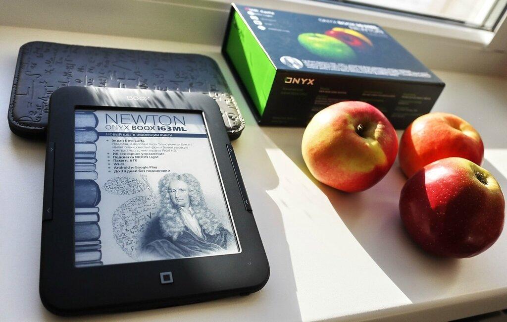 Электронная книга Onyx