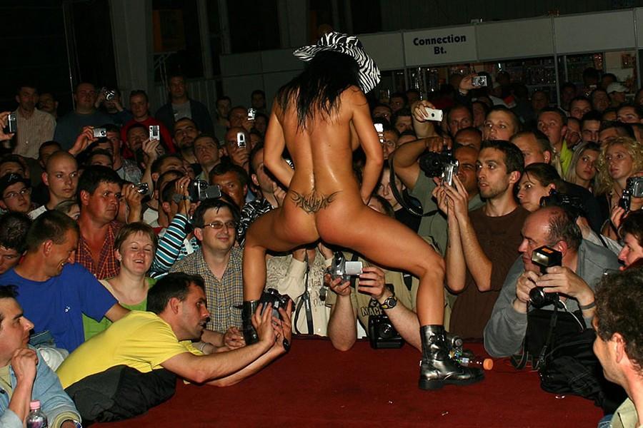 Смотреть эротические фото шоу 15 фотография
