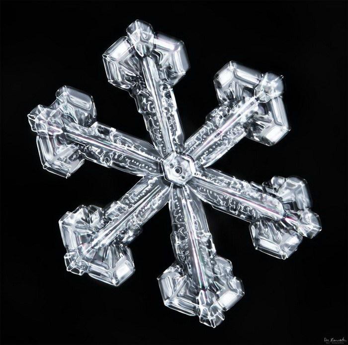 Хрупкая красота снежинок от Дона Комаречка (Don Komarechka)