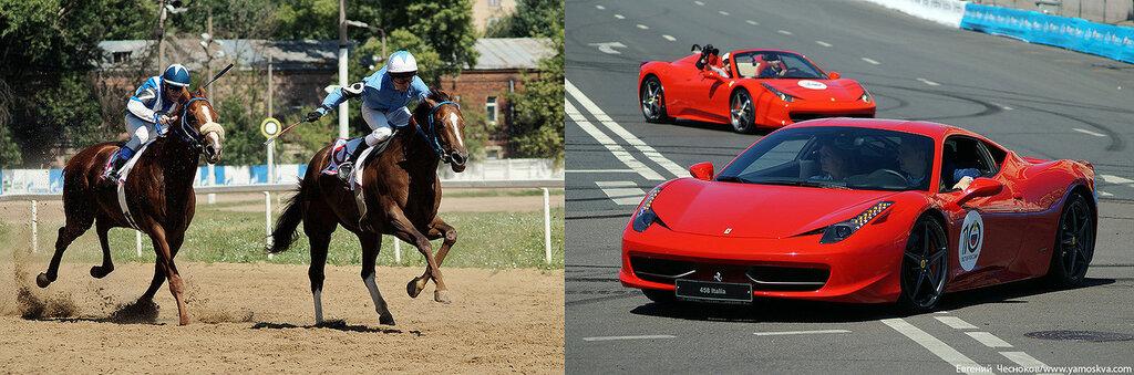 Лошади.14..jpg