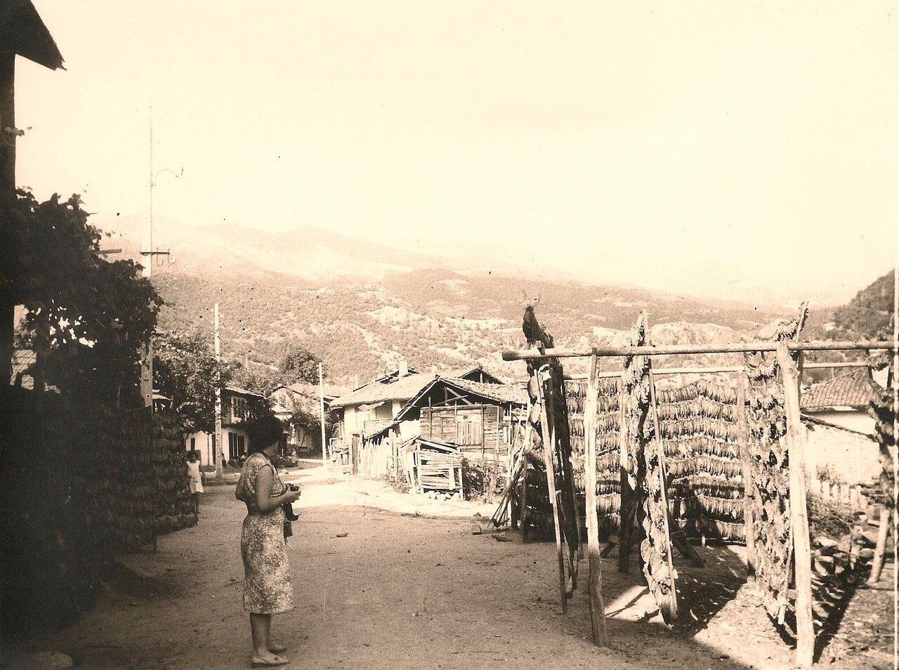 Болгария. Деревня Рила