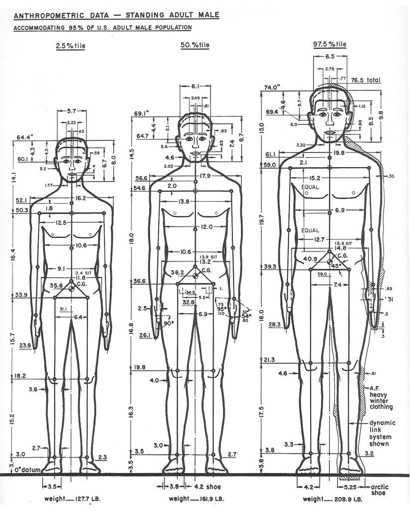 The Measure of Man, Henry Dreyfuss80.jpg