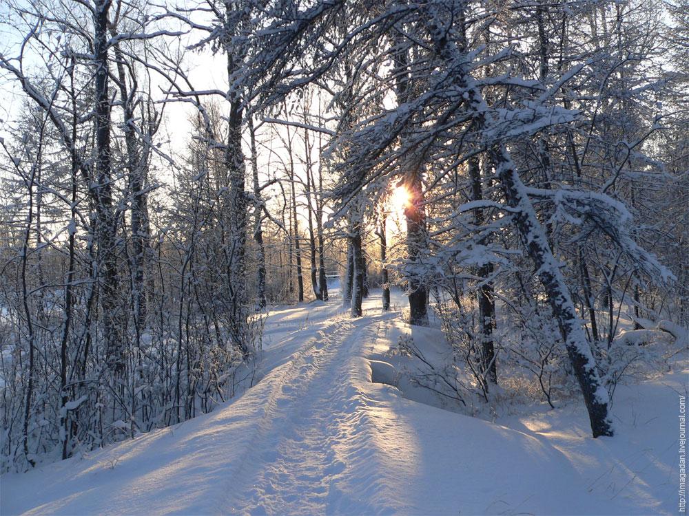 21 декабря - день зимнего солнцестояния!