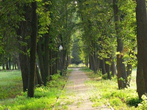 Парк 19 века