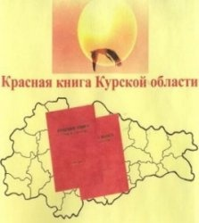 Книга Красная книга Курской области. Том 2 - Редкие и исчезающие виды растений и грибов