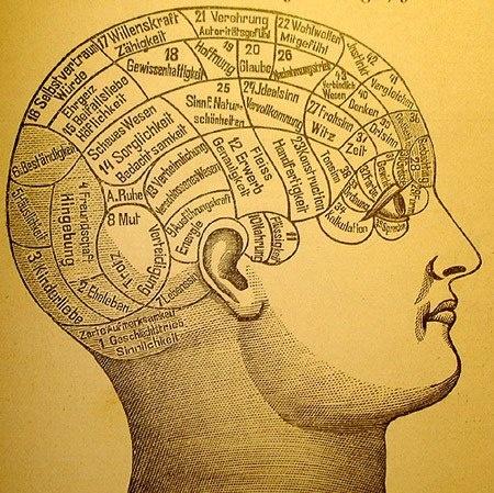 Книга [4 книги по интеллектуальному развитию] #книга #мозг