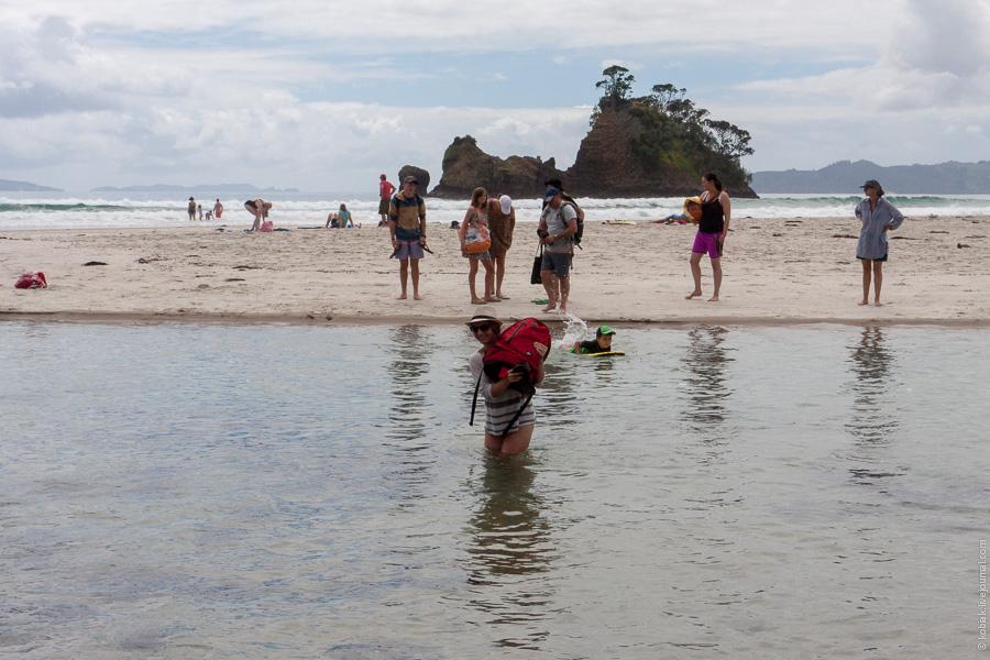 coromandel new chums beach