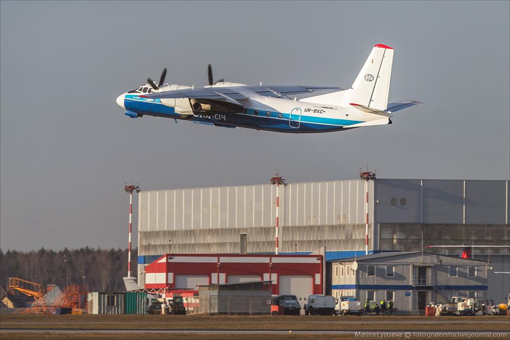 Внуково 21.11.2014