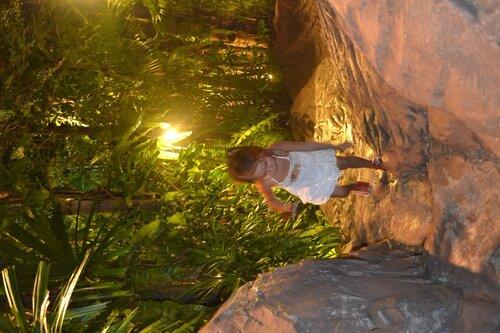 Джунгли в Дино парке