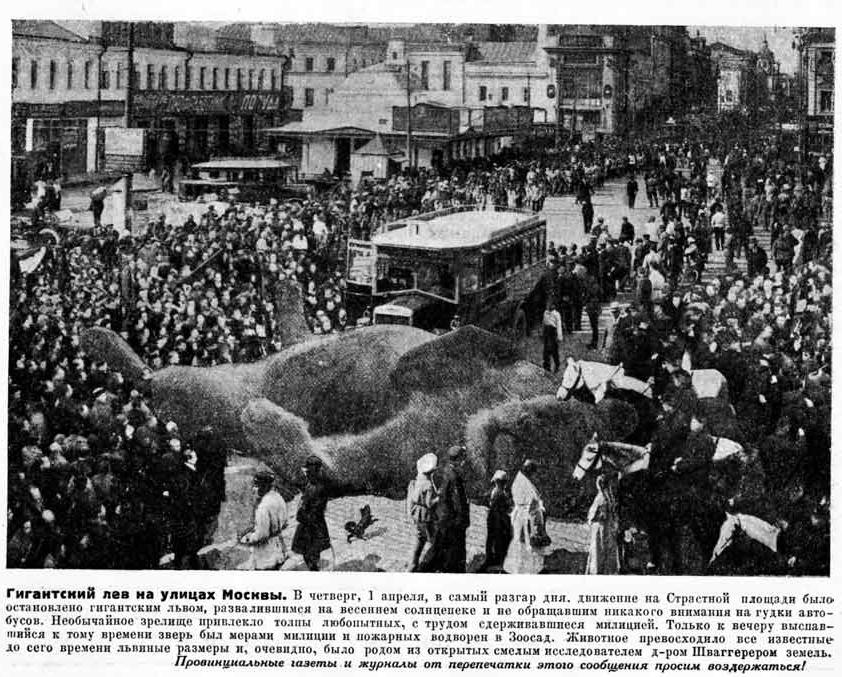 Giant lion on the streets of Moscow On Thursday, April 1st, the traffic on Strasnaya Square was stopped by a giant lion which stretched out under the spring sun and was paying no attention to the honking buses..jpg