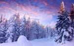 zima-sneg-derevya-gory-nebo.jpg