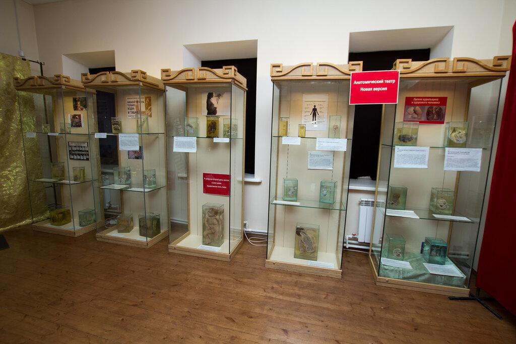 Выставка восковых фигур
