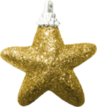 CelinoasDesigns_ChristmasLight_El4.png