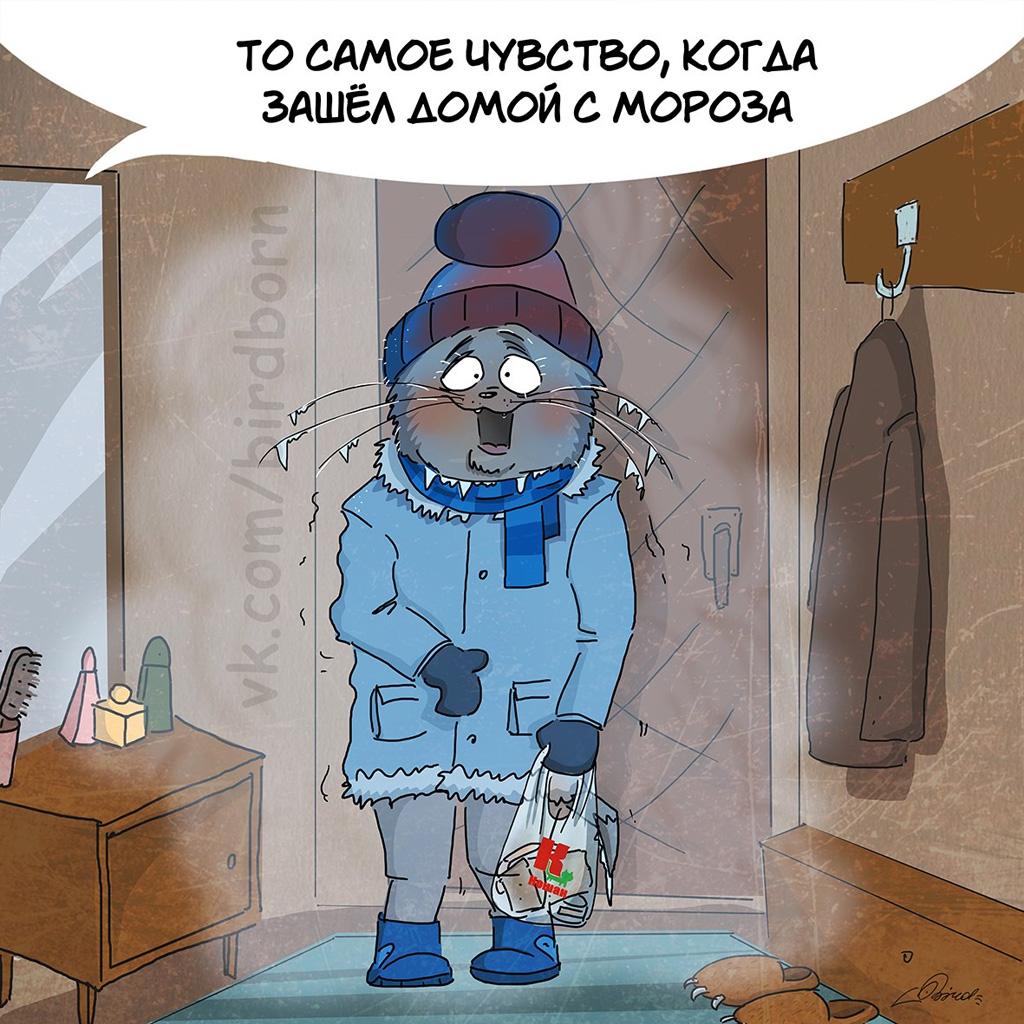 простой шип прикольные картинки холодно зима ниже уровень