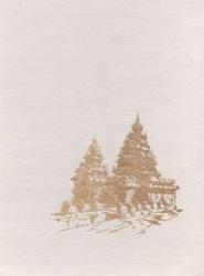 Книга Архитектура Индии раннего средневековья