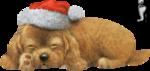 SvB_Kerst_hondje.png
