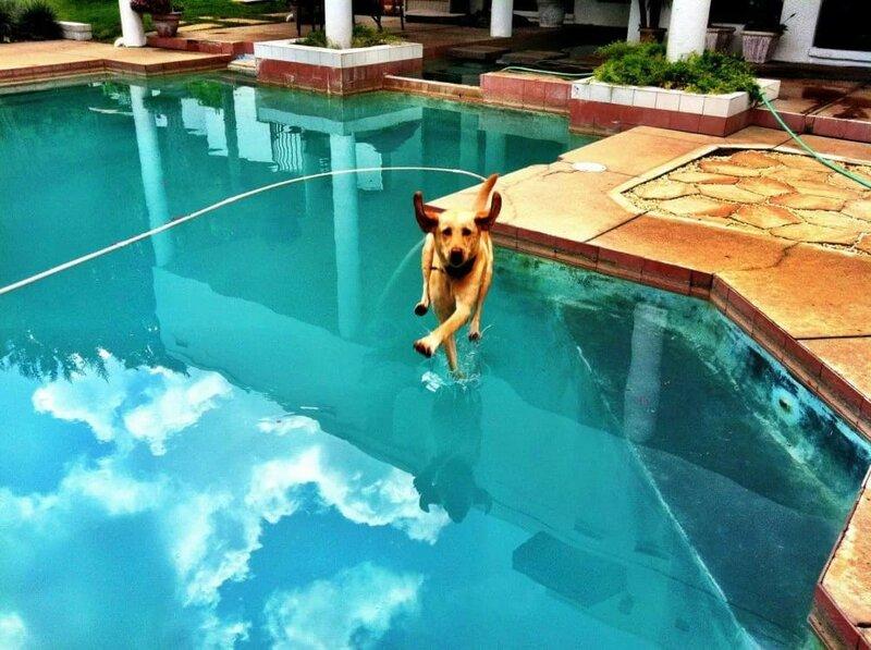 Давай гулять по воде со мной!