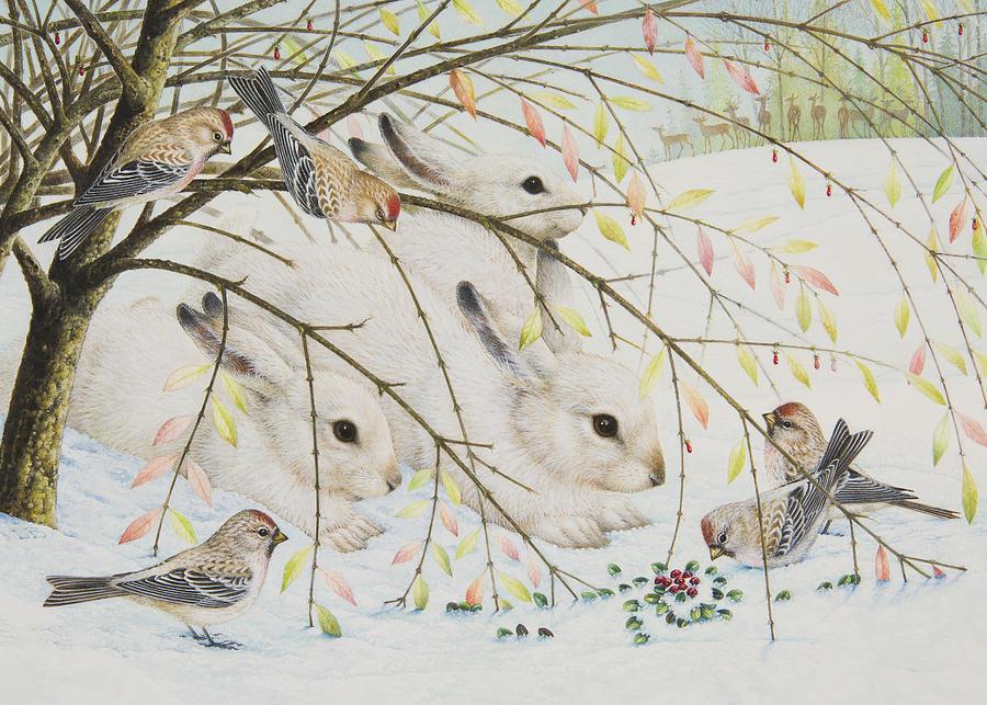 white-rabbits-lynn-bywaters.jpg