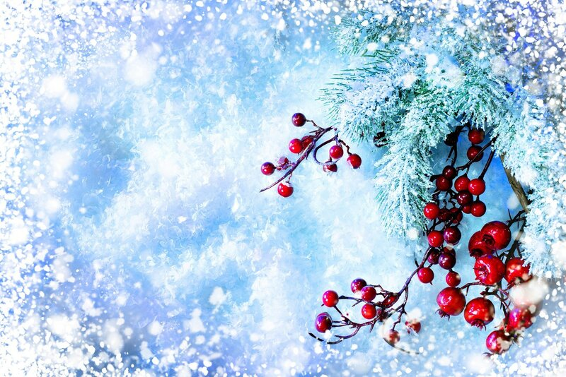Christmas Tree and Decorations over Snow background