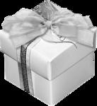Christmas Gift (24).png