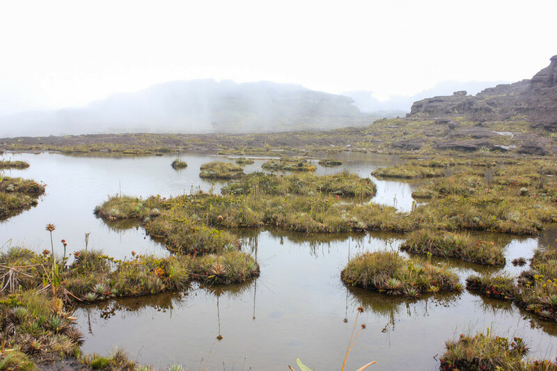 Фантастические виды на горе Рорайма в Южной Америке 0 146038 c451fc20 XL