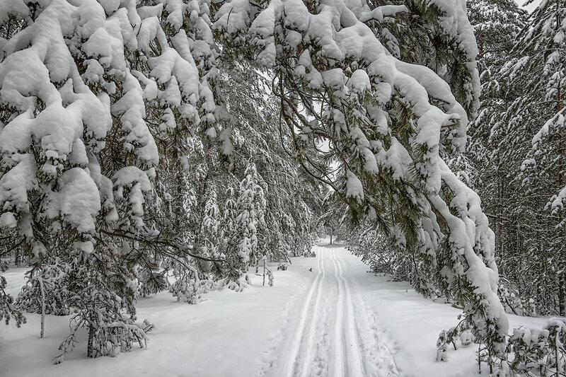 После снегопада