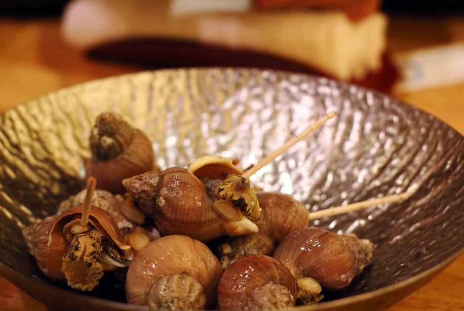 6. Магаданский трубач Брюхоногий моллюск с характерной винтообразной раковиной, обитающий в северных