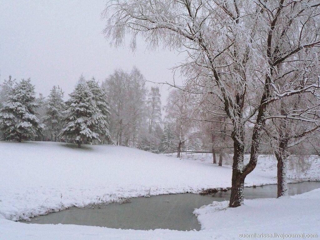 Первый снежный день - 6 декабря 2014 года
