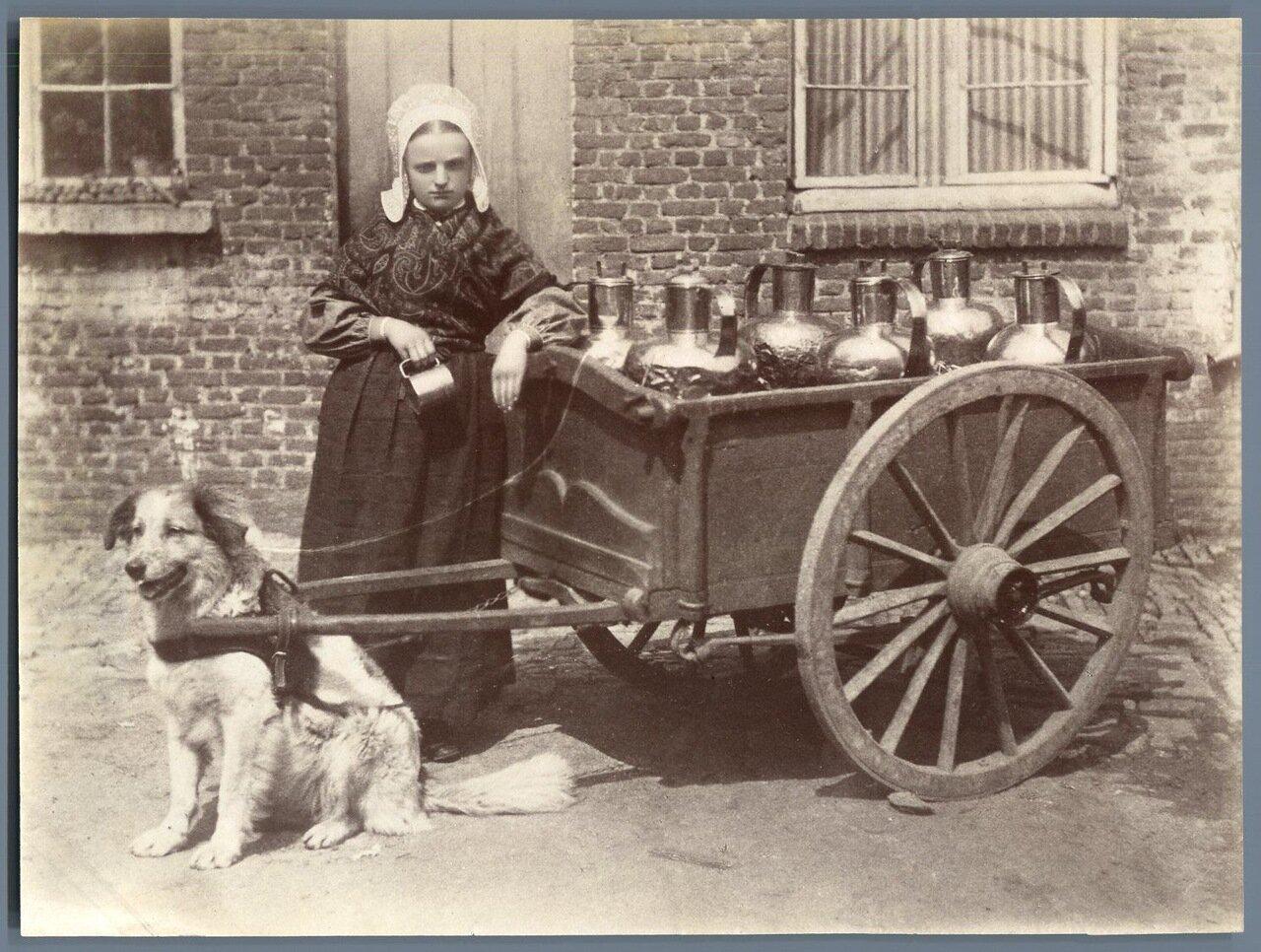 1880. Продавщица молока
