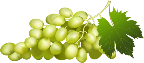 виноград (51).png