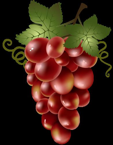 виноград (52).png