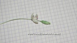 Мастер-класс. Мелкие цветы из ткани от Vortex  0_fbf12_ec139747_M