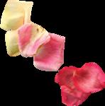 Valentijn_a (161).png
