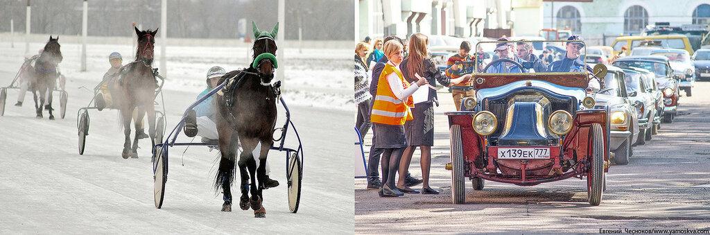 Лошади.07..jpg
