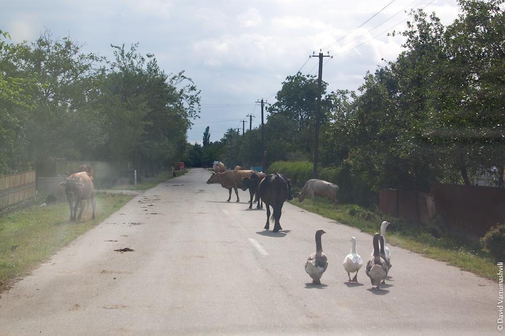 Грузия, окрестности Кутаиси, дорога в Баши