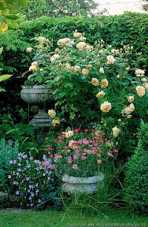 английский коттедж, соломенная кровля, заросший сад английского коттеджа, деревенский стиль сада английского коттеджа, деревенский сад, розы, вазы