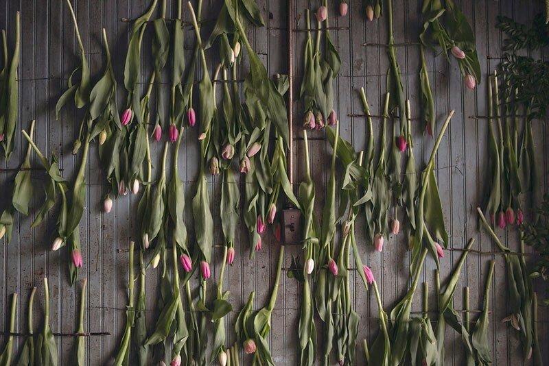 Флорист превратила заброшенный дом в Детройте в цветущий сад