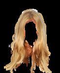 hair51.png