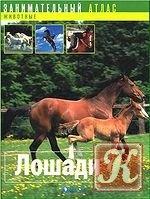 Книга Занимательный атлас. Лошади