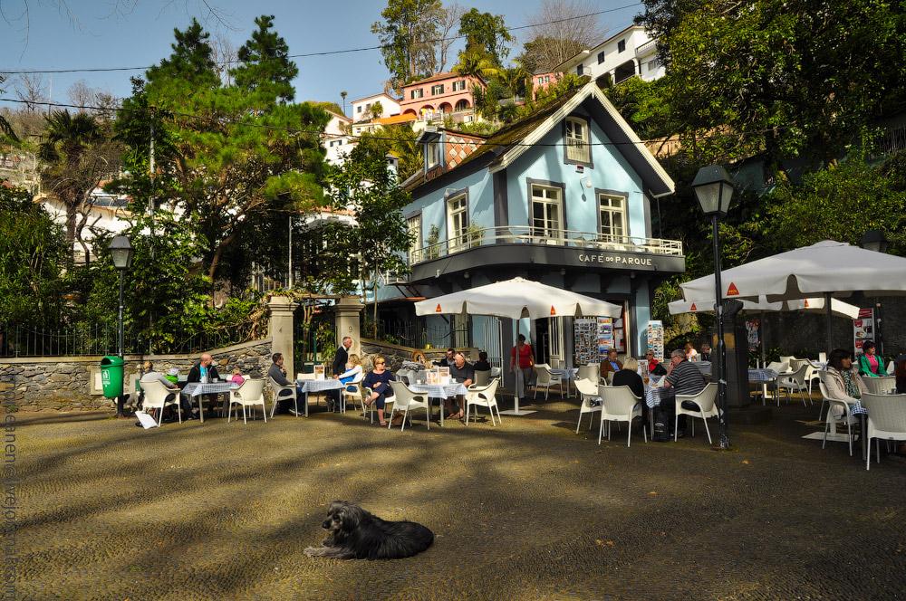 Madeira-Garten-(5).jpg