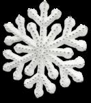 mzimm_snow_wonder_snowflake3_sh.png