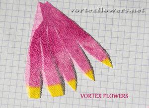 Мастер-класс. Хризантема из ткани «Ягодка» от Vortex  0_fbf7f_532035f1_M