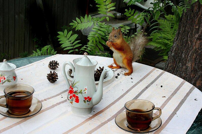 А где мой чай?...