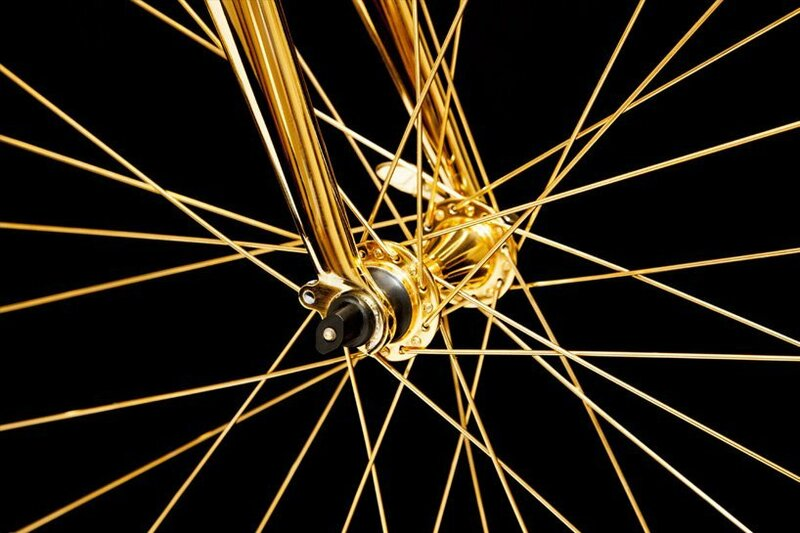 может золотой велосипед фото познакомимся этим вида